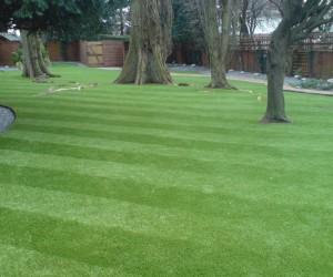 artifical_lawn_6.jpg